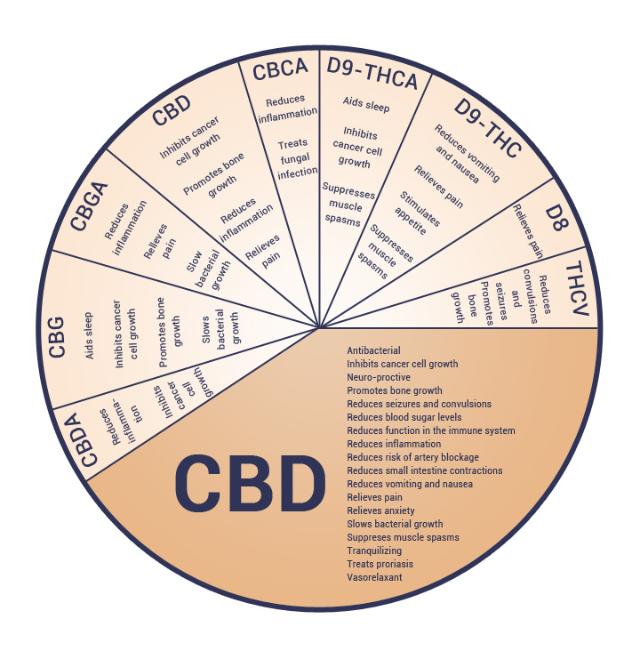 cbd products oil full spectrum