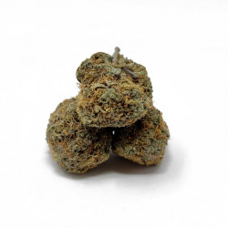 Grease Monkey weed
